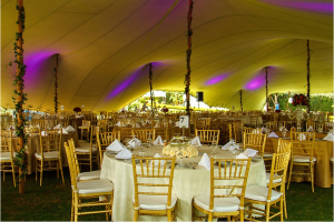Lighting by Discmen Decor by Infinite Planners